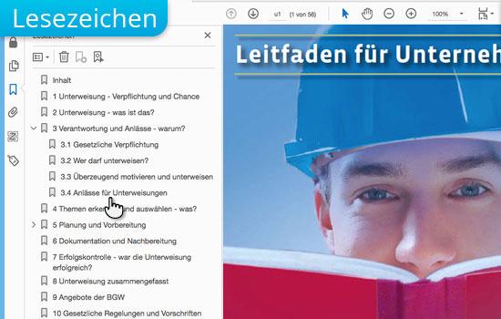 Lesezeichen bei interaktiven PDF