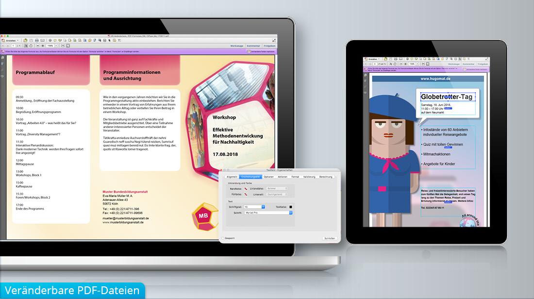 Bearbeitung und verändern von PDF-Formularen bei Plakaten und Flyern