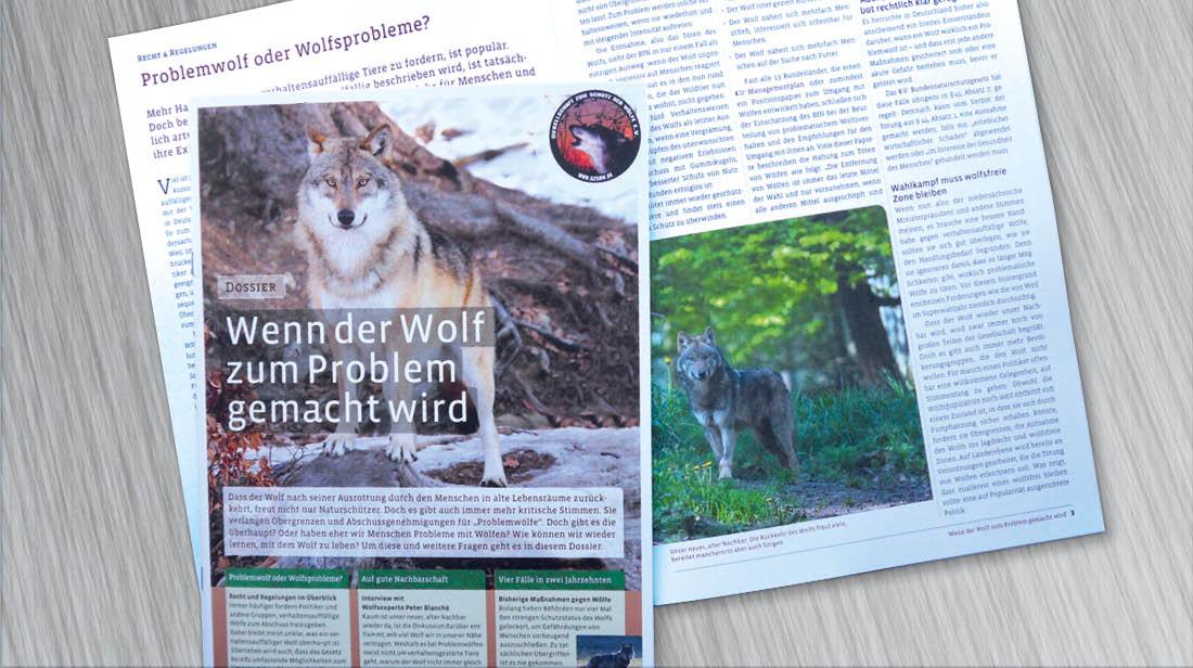 Cover Informationsfolder über die Rückkehr der Wölfe nach Deutschland