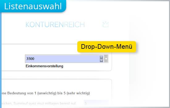 Durch Dropdown-Menüs lässt sich in Formular-PDFen schnell eine Auswahl treffen