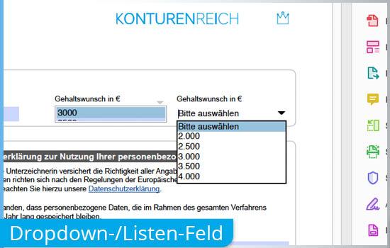 Dropdown-Menü in beschreibbaren Formular PDF