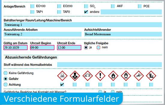 Interaktives beschreibbares Formular-PDF mit Formularfelder