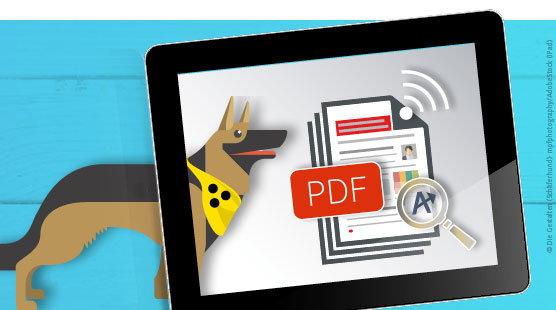 Barrierefreie PDF